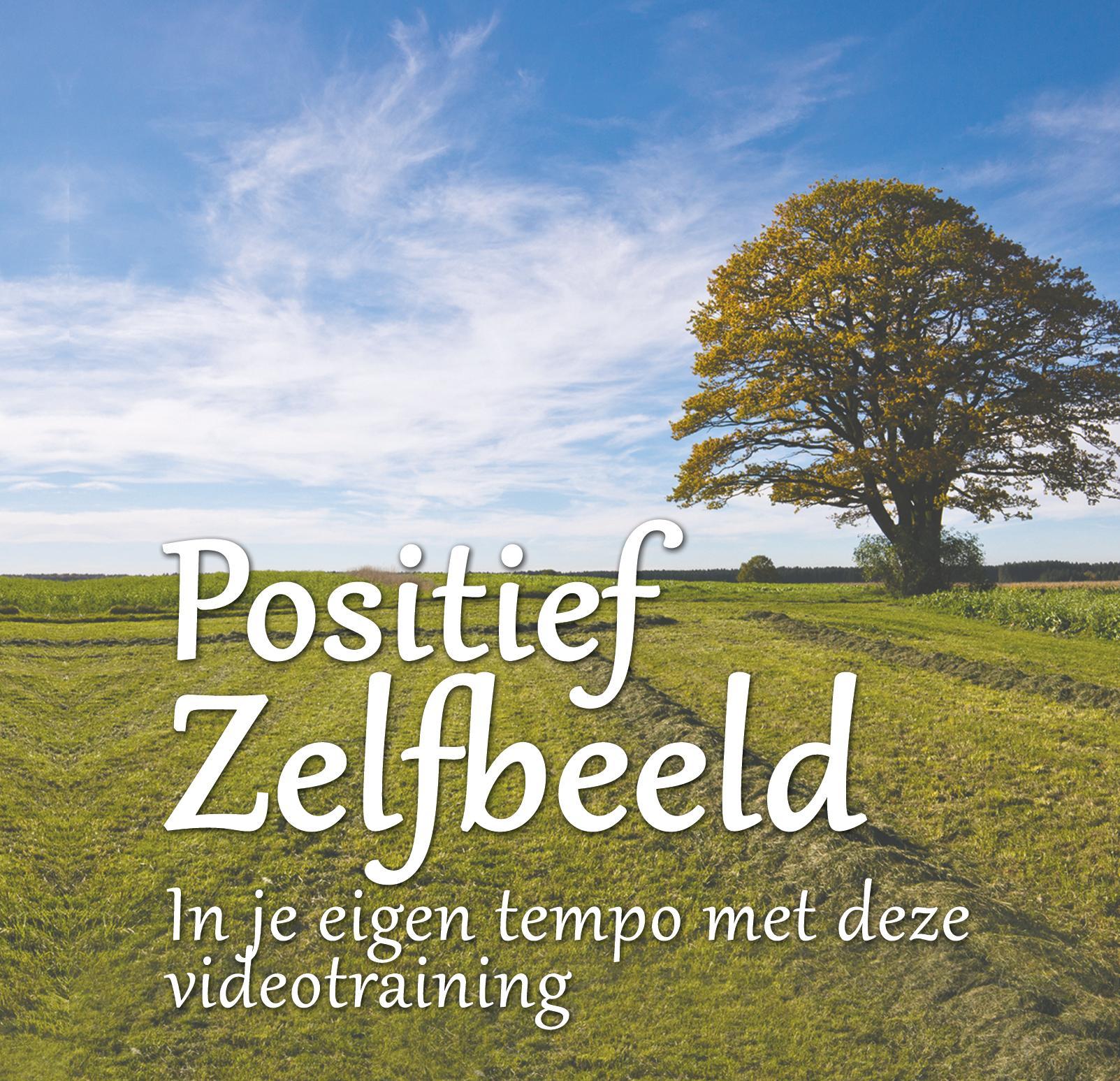 DVD Positief Zelfbeeld voor Power cd's en mp3's voor tevredenheid positiviteit en energie