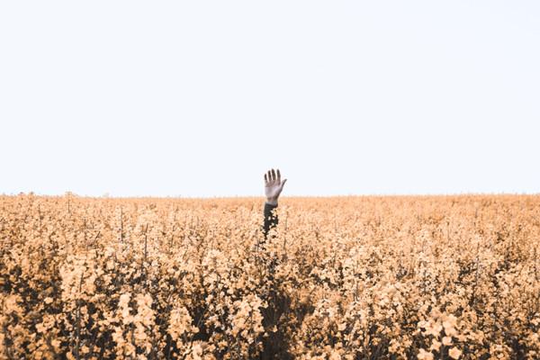 Figuurlijk verdrinken in een veld, hopend dat iemand je arm kan vastpakken om je te redden