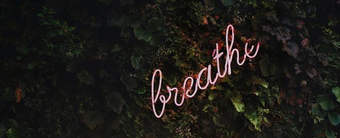 Hoe Angélique innerlijke rust vond waardoor haar klanten liever kwamen artikel bureau stroom breathe op afbeelding