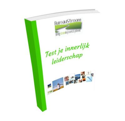 Ebook Test je Innerlijk Leiderschap