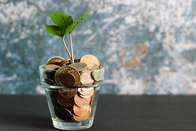 Spaarpot met groeiend geld